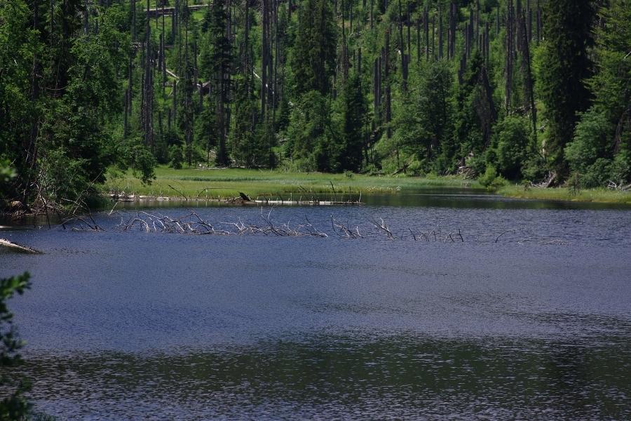 jezero Laka 190702 6832