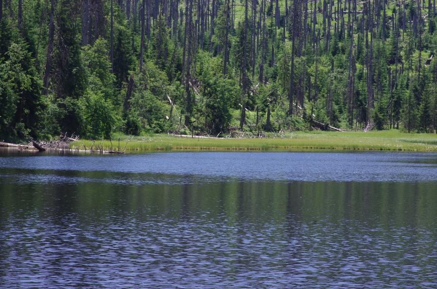 jezero Laka 190702 6910